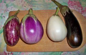 patlıcan tipleri